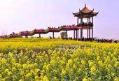 首批148个国家农村产业融合发展示范园创建名单公布