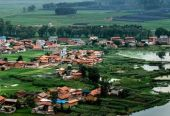 五问乡村振兴战略:农村产业如何旺起来