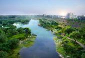 专家:绿色发展促进生态城市建设有四大效应