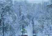 国土部:1月平均降雪量为2000年以来历史同期第二多