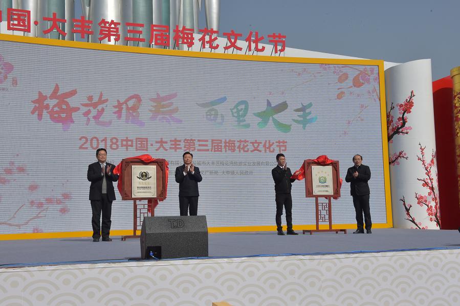 中国·大丰第三届梅花文化节绚丽开幕