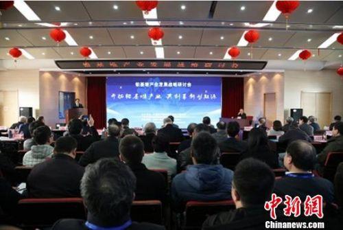 百余位院士及行业代表安徽合肥研讨铅基堆核能产业