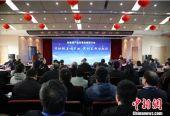 上百位院士及行业代表安徽合肥研讨铅基堆核能产业