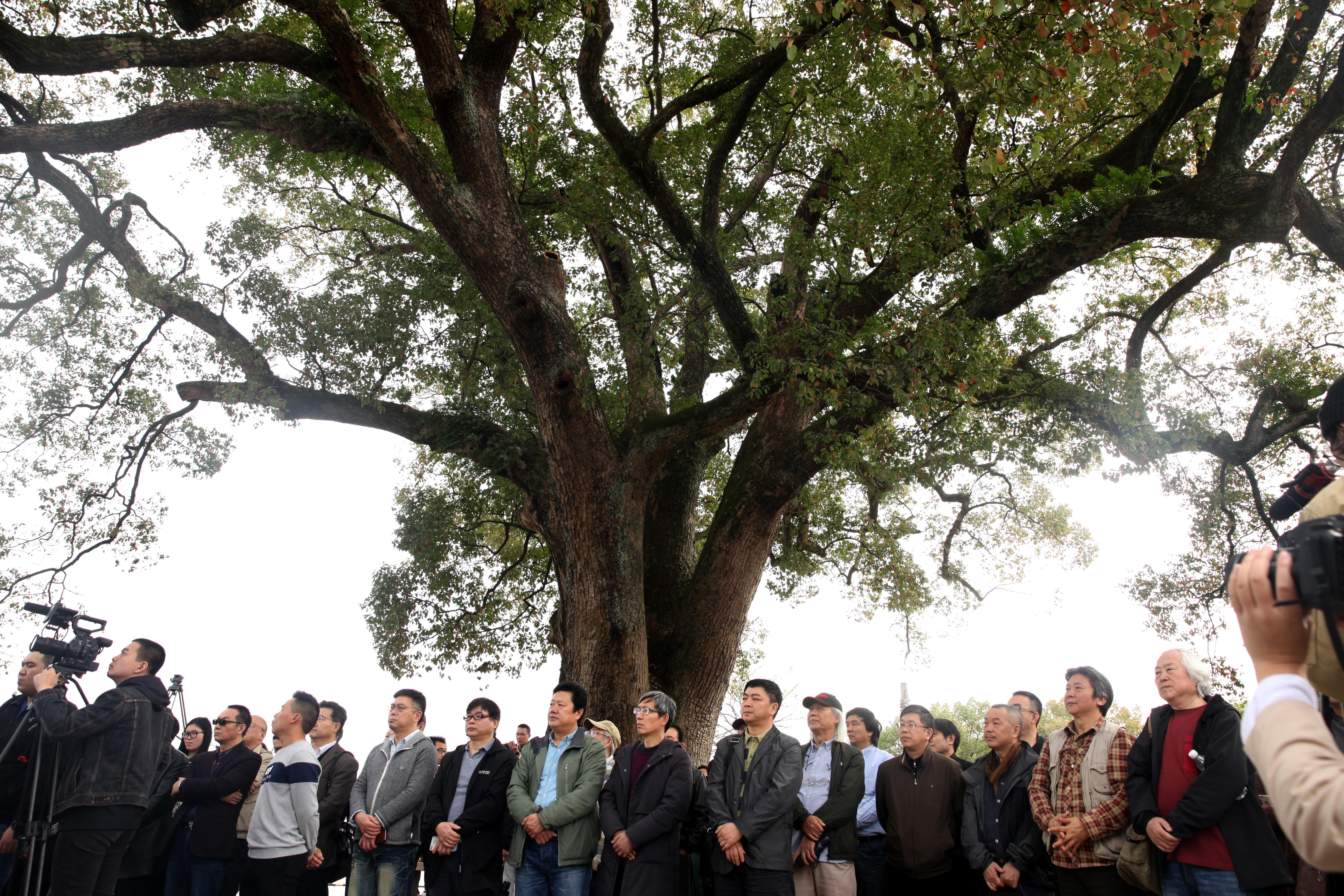 """古堰画乡是""""丽水巴比松油画""""的发祥地、""""中国摄影之乡""""的主要创作基地,每年接待写生创作人数超15万人"""