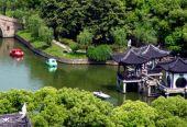 """上海这个区离""""遍地是公园""""还有多远?"""