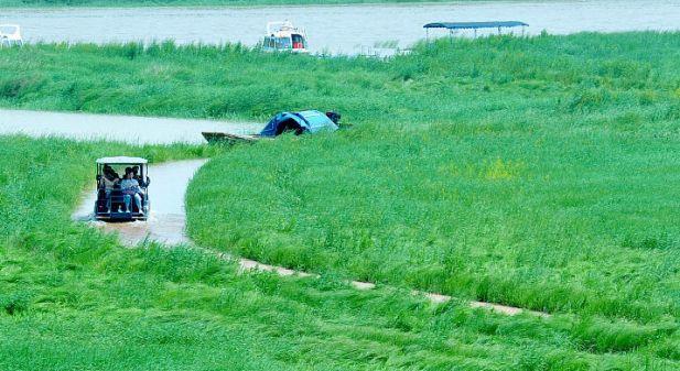 """你在桥上看风景  看风景的人在""""水上公路""""看你"""