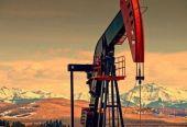 36家地炼获原油进口配额近亿吨 民企进口原油迎高峰