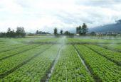 彝良县新场水库工程初步设计报告获得市级批准