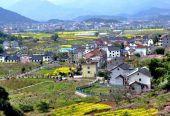 发改委:推动乡村振兴战略实施 促进粮食产业高质量发展