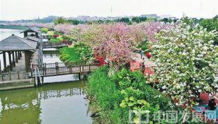 广州市探索出都市生态与经济互动发展的新路