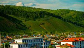 森林小镇应实行最严格的森林资源管理制度