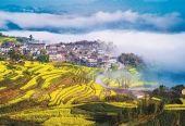 乡村振兴战略细化政策正在酝酿 后期政策望密集落地