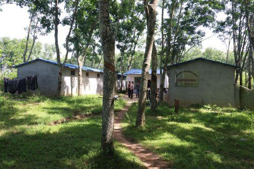 占地3亩的长标蛇扶贫养殖基地