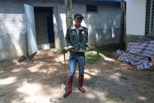 符家所和他脱贫致富的长标蛇