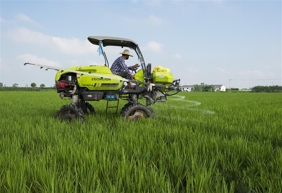 江苏海安:家庭农场逐步向现代化发展