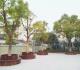 """江湾人精致的生活 从""""阿拉小花园""""开始"""