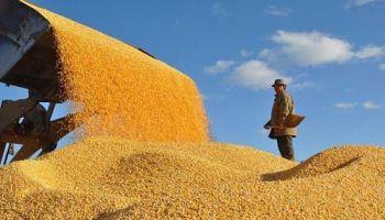 国家粮食和物资储备局与黑龙江签署战略合作协议