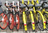 """诸大建:共享骑行要驶入""""循环经济"""""""