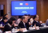 中缅经济走廊联合委员会第一次会议:成立12个重点合作领域专项工作组