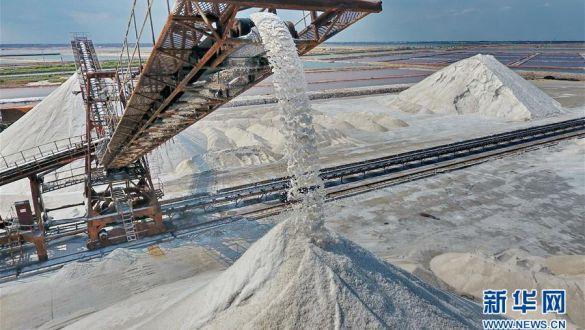 河北唐山:秋盐大丰收