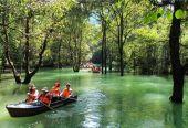 中国森林旅游年产值破万亿元