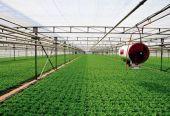 我国农业科技进步贡献率达57.5% 突破性成果多