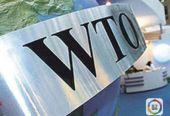 """升级WTO,欧盟能成""""最大赢家""""?"""