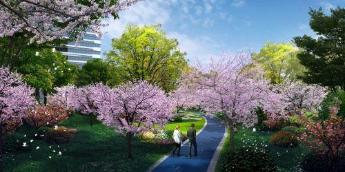 城东市民有福啦!钱塘智慧城首条樱花跑道即将亮相