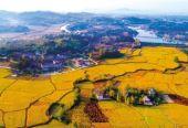 13部门联合促进乡村旅游发展提质升级