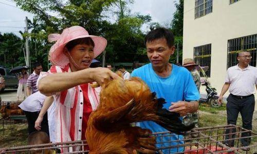 图为山地村民展示农产品。