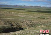 """中外科学家最新研究:西藏地区曾分布""""热带雨林"""""""