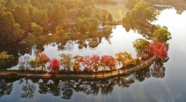 南京:十月故里,秋草相寄,等一日不期而遇