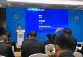 """第五届世界互联网大会举行""""互联网+公共服务""""论坛"""