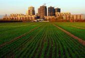 城乡一体化与乡村振兴如何协同发展
