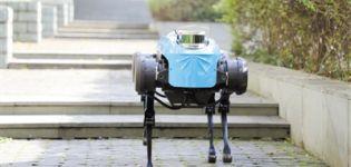 四足机器人 学会上下台阶了