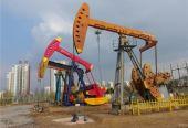山东东营:油区、地方融合发展迈向更高水平