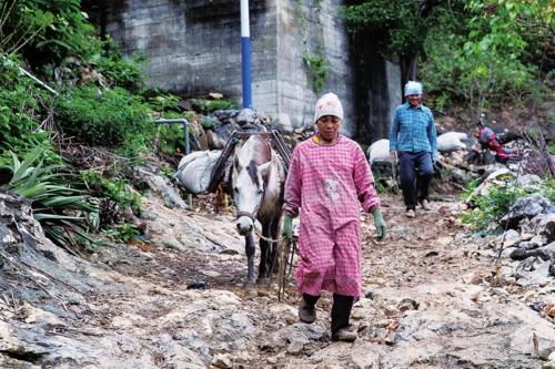 ③村民在运送修缮房屋用的建材。