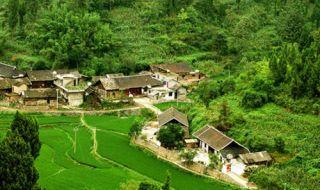 引进社会资本探索海南美丽乡村建设新路径
