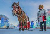 入春前来哈尔滨冰雪大世界赶赴最后的冬日梦幻之约