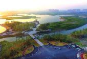 上海奉?#20572;?#31569;?#20154;?#22825;一色郊区生态屏障 满足公众优美生态环境需要