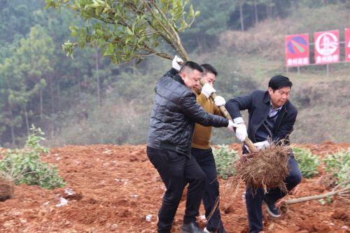 施工现场 记者吴承坤摄