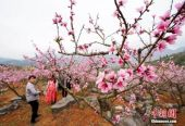"""中国首批国家生态文明试验区绿色""""颜值""""攀高"""