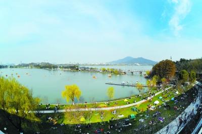 南京:春绿台城柳