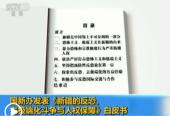 中国涉疆问题专家:打击暴恐必须遏制极端