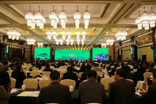 首届国际绍兴(嵊州)绿茶大会在嵊州举行