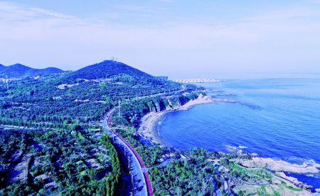 青岛西海岸新区:好生态自有含金量