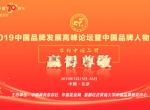 2019中国品牌发展高峰论坛暨中国品牌人物峰会