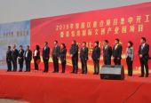 长春市绿园区举办重点项目集中开工暨青怡坊国际文创产业园奠基仪式