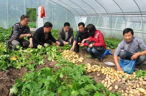 农业农村部将全面推进贫困地区科技服务
