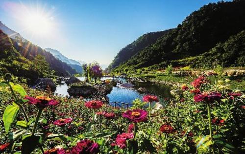 建有华北地区最大的山岳型花园,400余种鲜花在七个主题花园中竟相开放,春夏秋季是花的海洋。